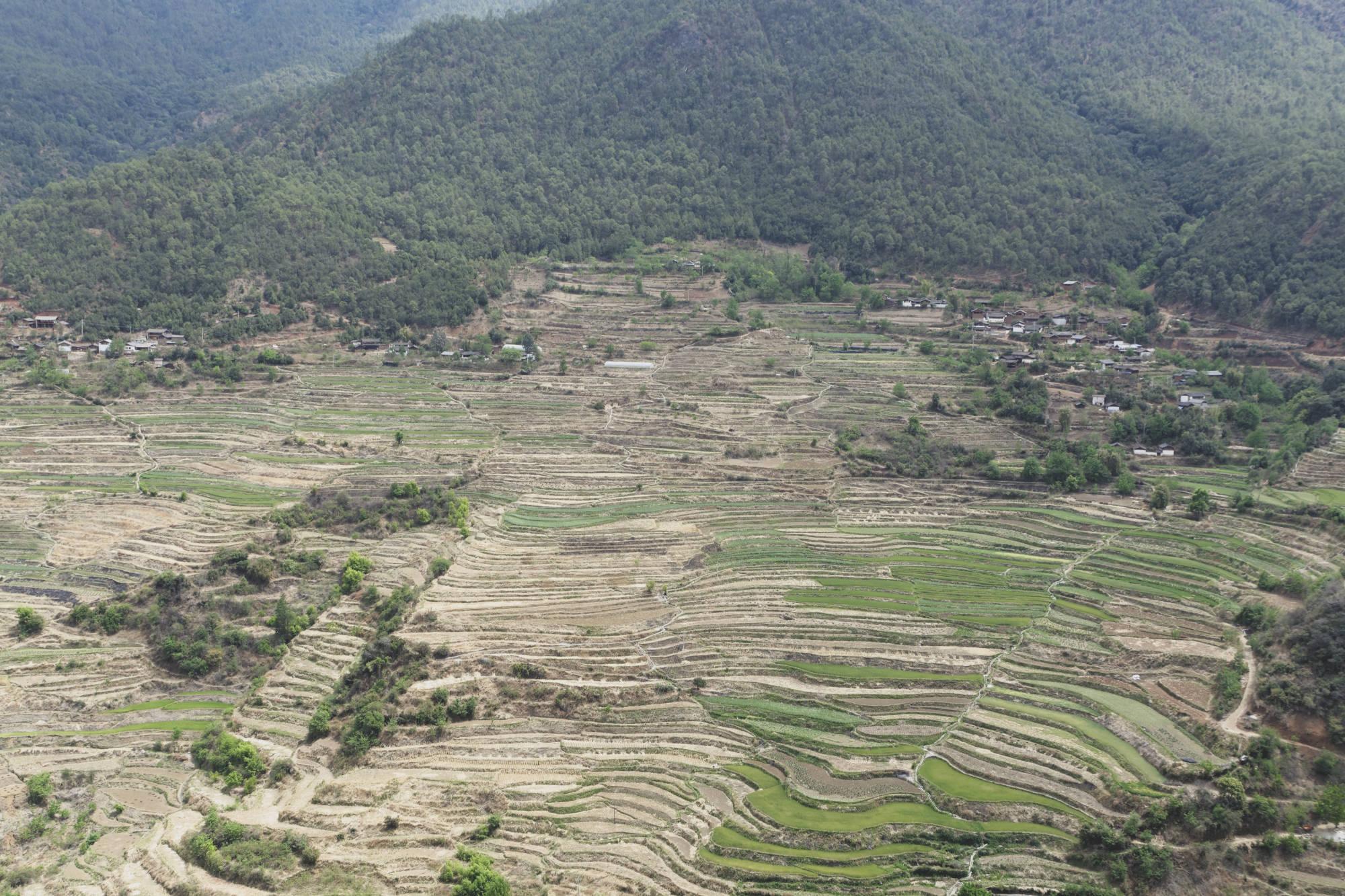 Cultures en terrasses de la vallée de Wumu