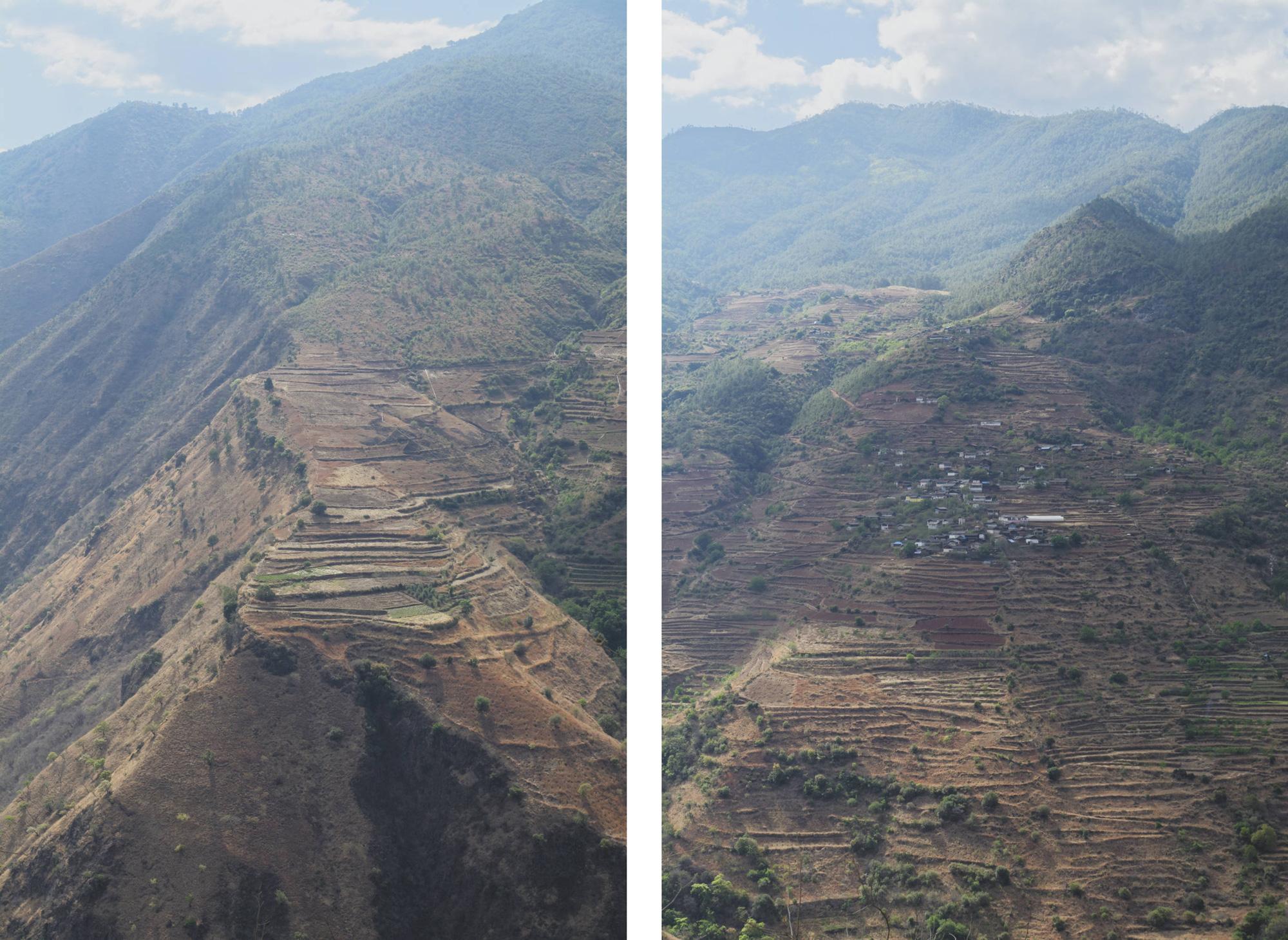 Cultures en terrasses surplombant le Yangzi