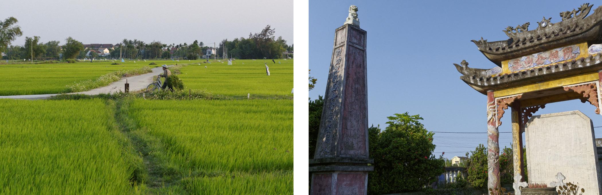 Rizières et temple Hoi An