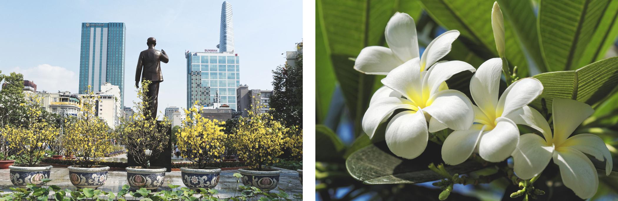 Statue de l'Oncle Hô et fleurs de frangipanier