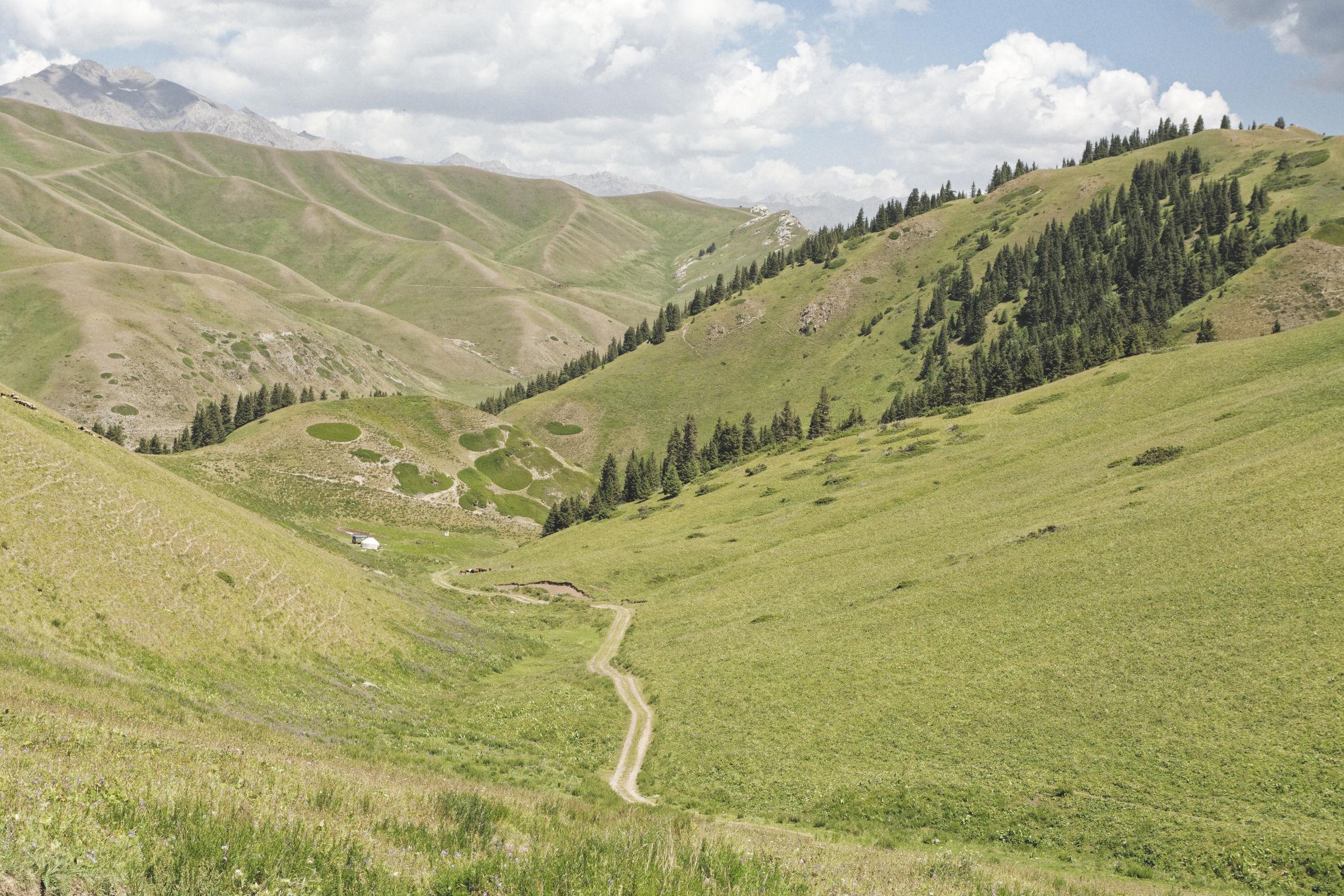 Vallée alpine Bosogo Kirghizstan