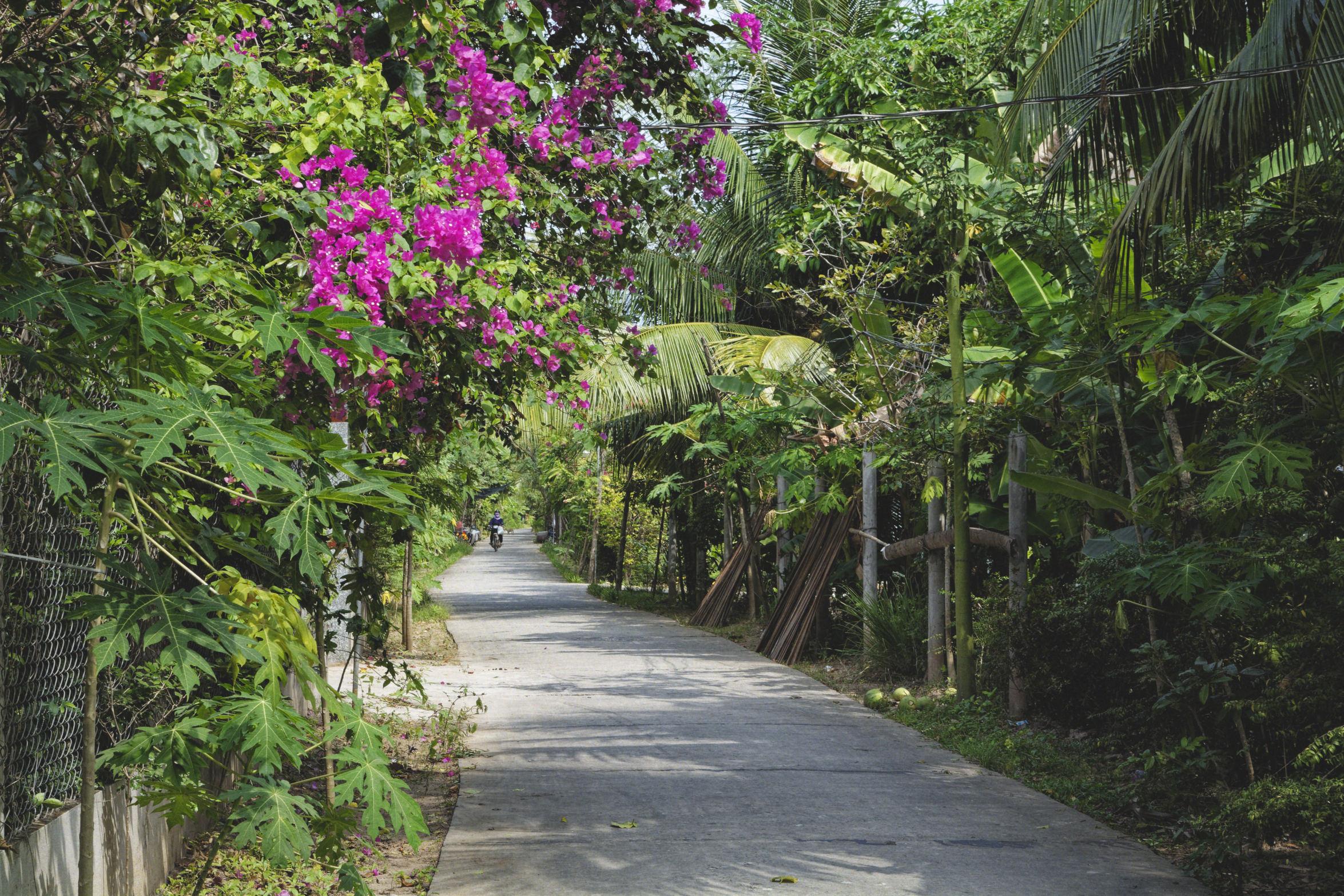 Delta du Mékong nature