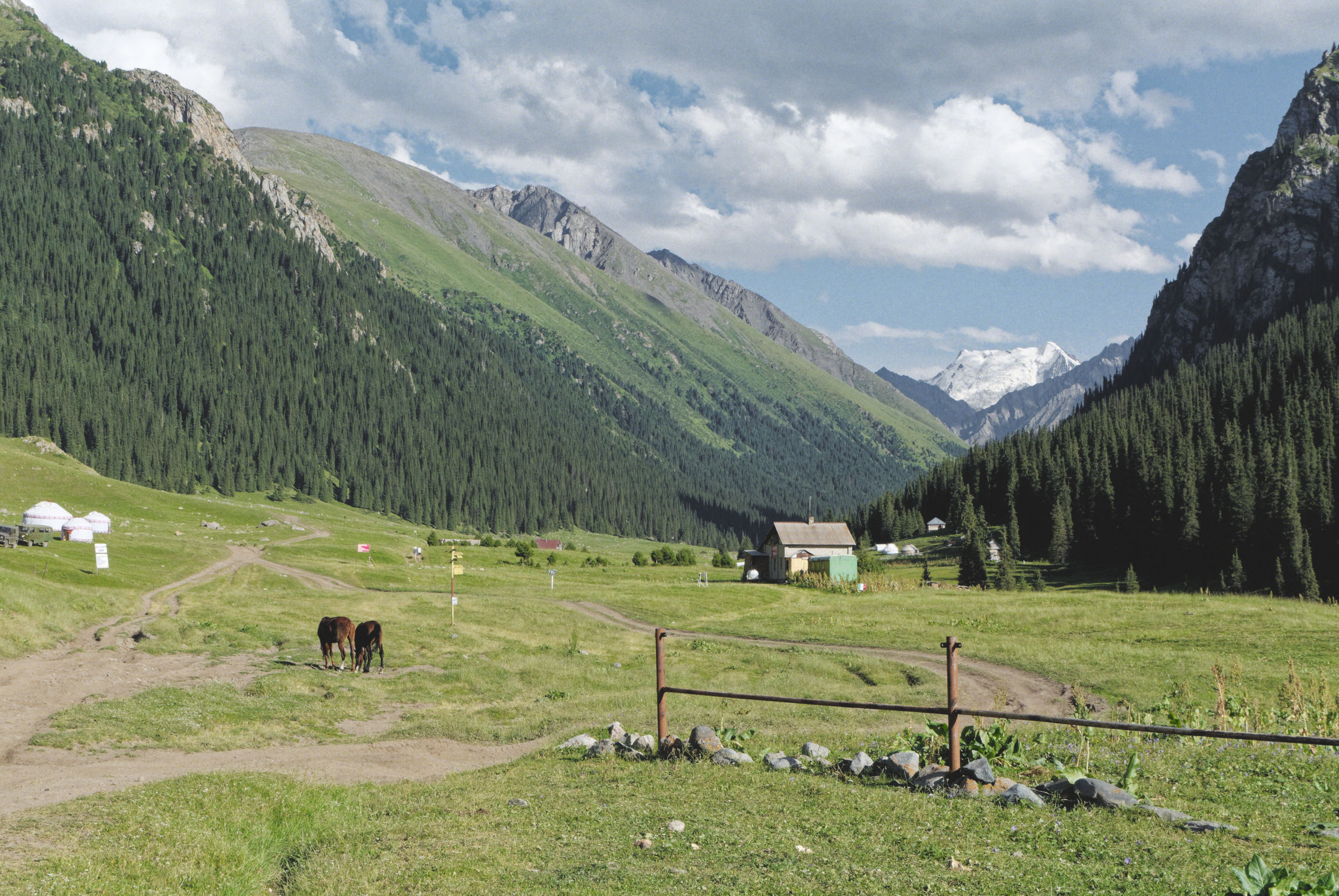 Vallée d'Altyn Arashan Kirghizstan, chevaux et glacier