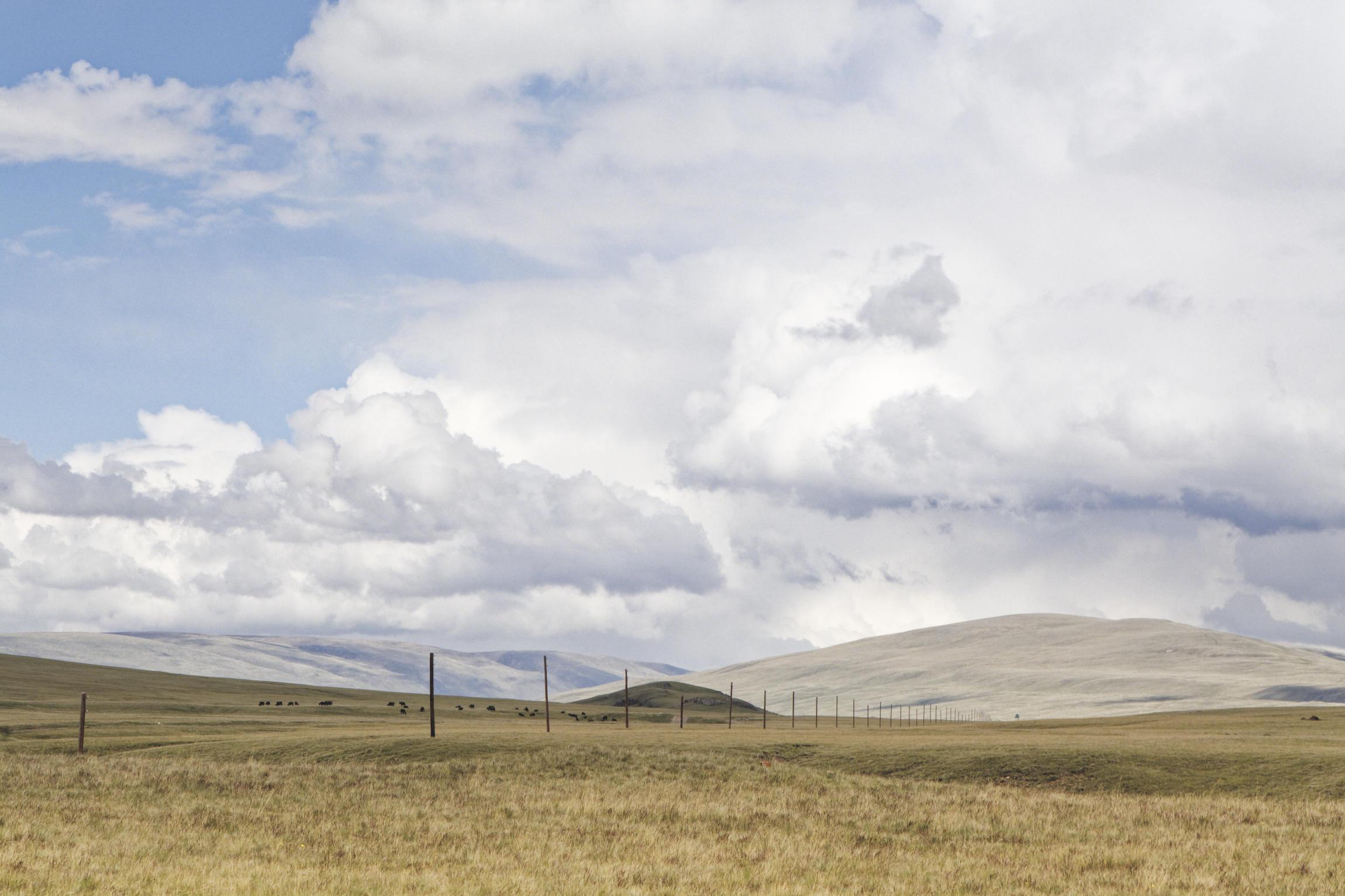 Steppe Eshkeli Tash Kirghizstan