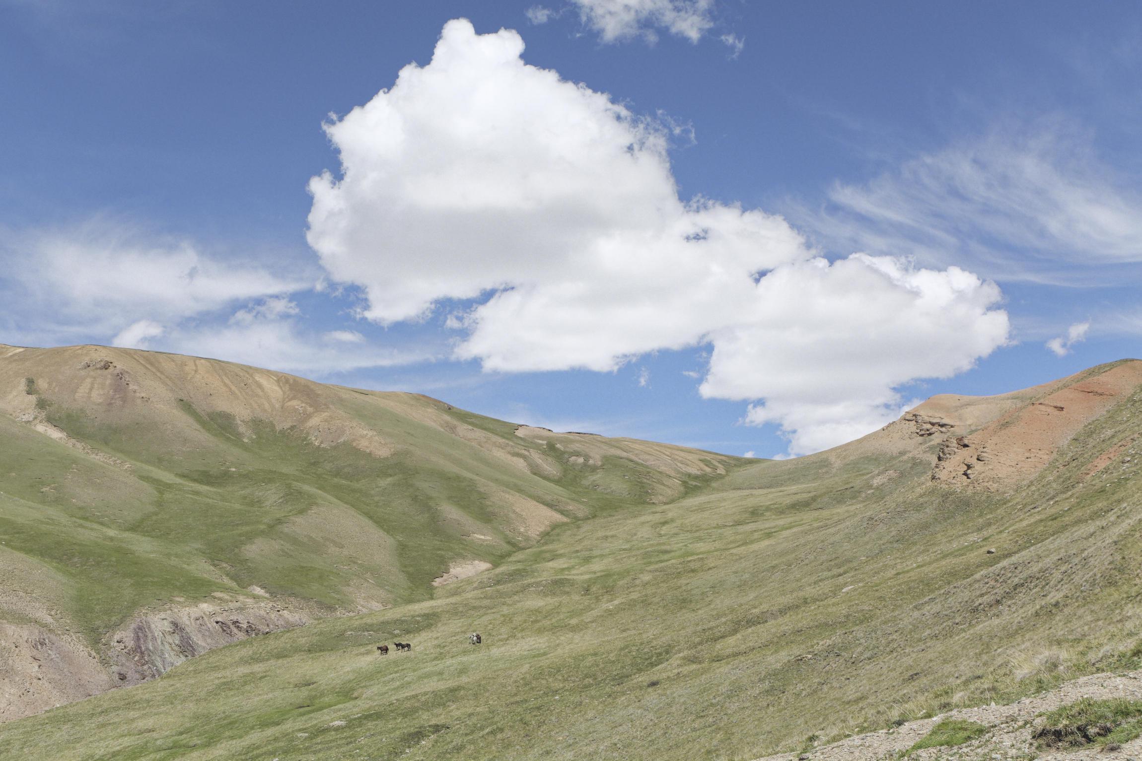 Chevaux et nuage vallée de Kaindy Kirghizstan